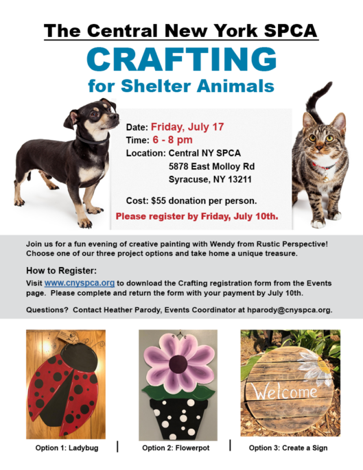 CRAFTING FOR SHELTER ANIMALS